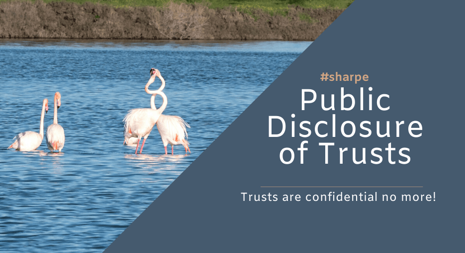 Public Disclosure of Trusts in Cyprus